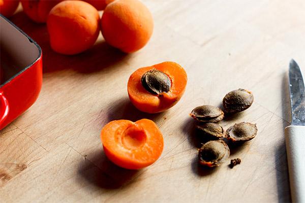Чем полезны абрикосовые косточки