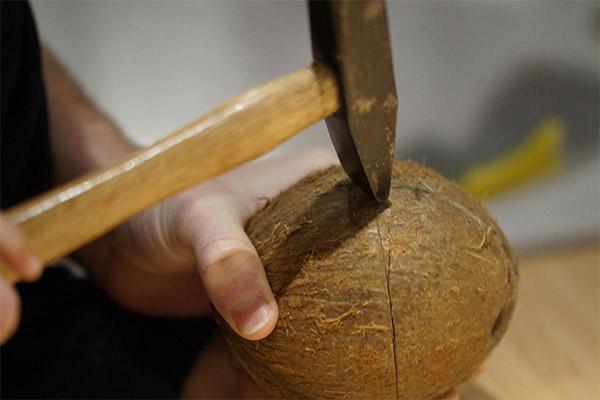 Как открыть кокос с помощью молотка