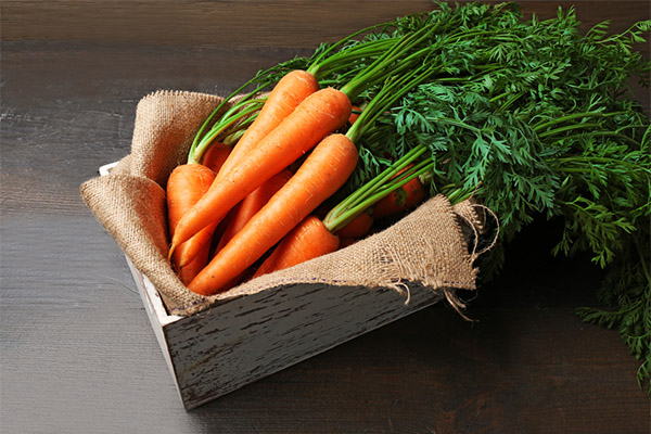 Как выбрать и хранить морковь