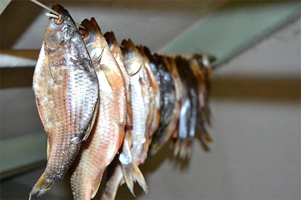 Как сушеную рыбу