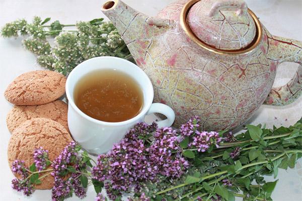 Как заваривать чай с душицей