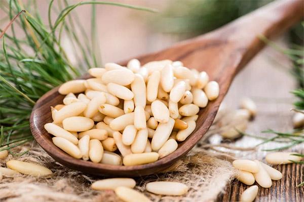Можно ли давать животным кедровые орехи