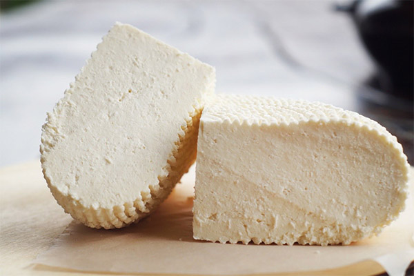 Почему адыгейский сыр горчит