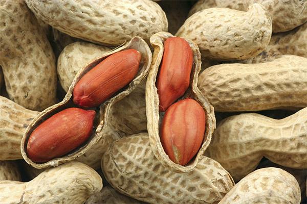 Рецепты народной медицины на основе арахиса