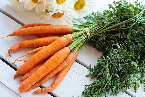 Рецепты народной медицины на основе моркови