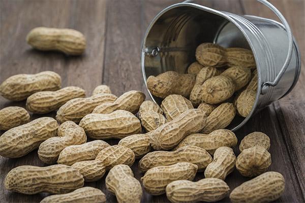 Вред и противопоказания арахиса