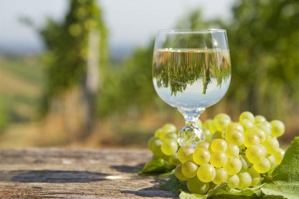 Белое вино в медицине