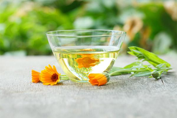 Чай из календулы в медицине