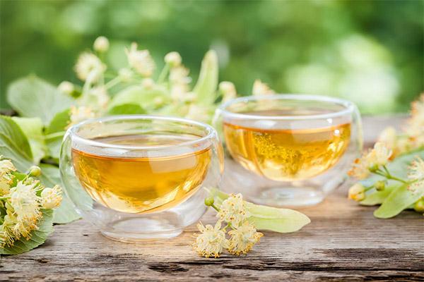 Чай из липы в медицине