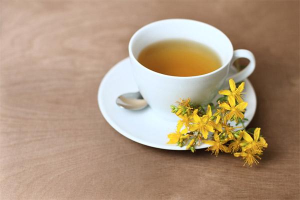 Чай из зверобоя в медицине