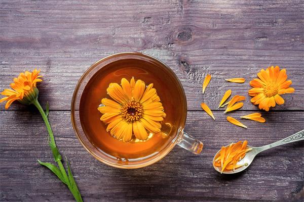 Чем полезен чай из календулы