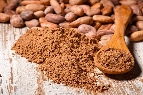 Чем полезен какао-порошок