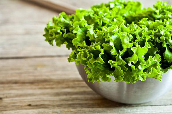 Чем полезен листовой салат