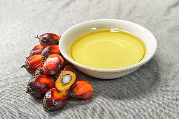 Чем полезно пальмовое масло