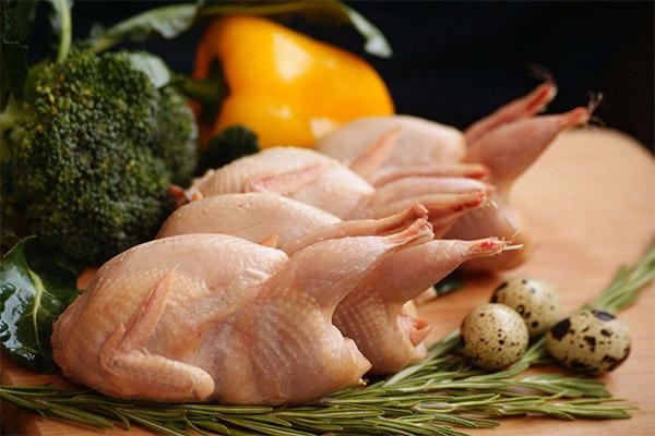 Чем полезно перепелиное мясо