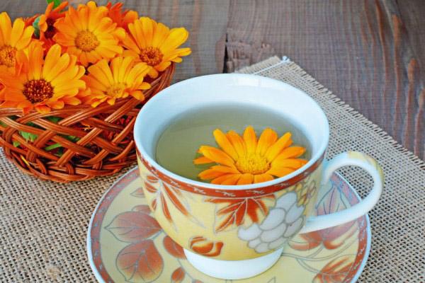 чай с календулой польза