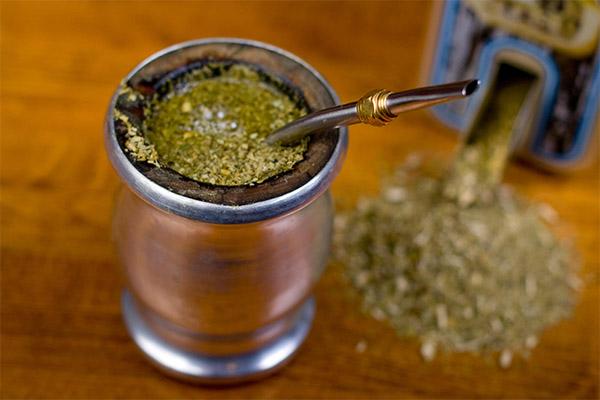 Интересные факты о чае мате