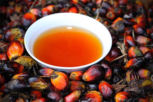Интересные факты о пальмовом масле