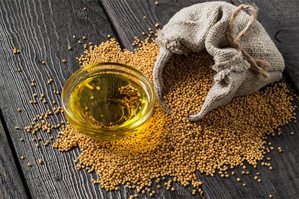 Как выбрать и хранить горчичное масло