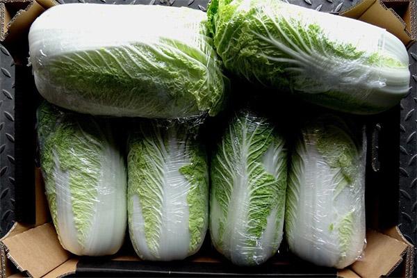 Как выбрать и хранить пекинскую капусту