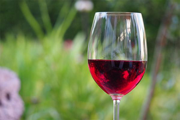 Красное вино в медицине