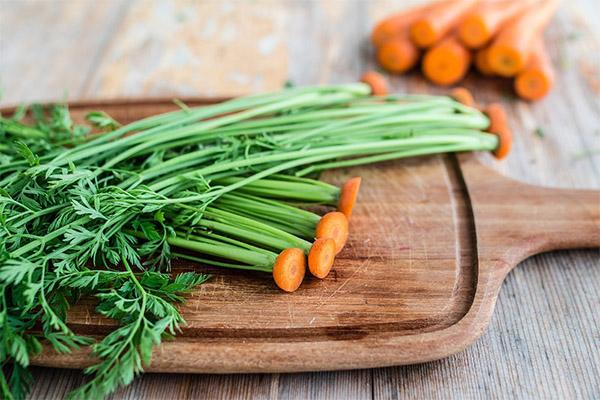 Морковная ботва в кулинарии