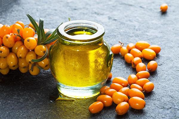 Облепиховое масло в медицине