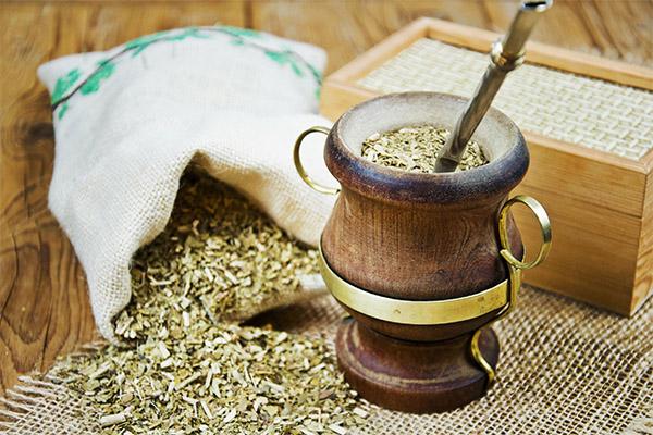 Полезные свойства чая мате