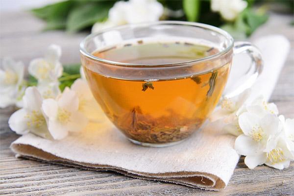 Польза чая с жасмином для похудения