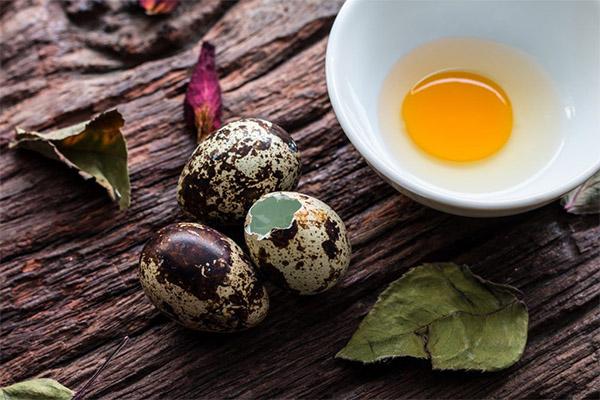 Польза и вред сырых перепелиных яиц