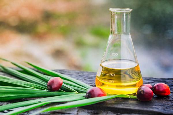 Применение пальмового масла в народной медицине