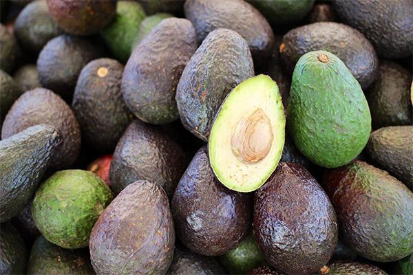 Рекомендации по выбору авокадо