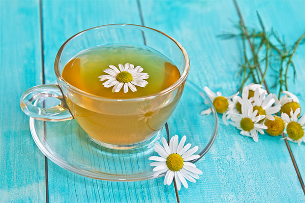 Ромашковый чай в косметологии