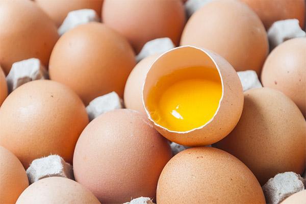 Срок хранения сырых яиц