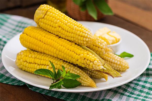 Вареная кукуруза в медицине