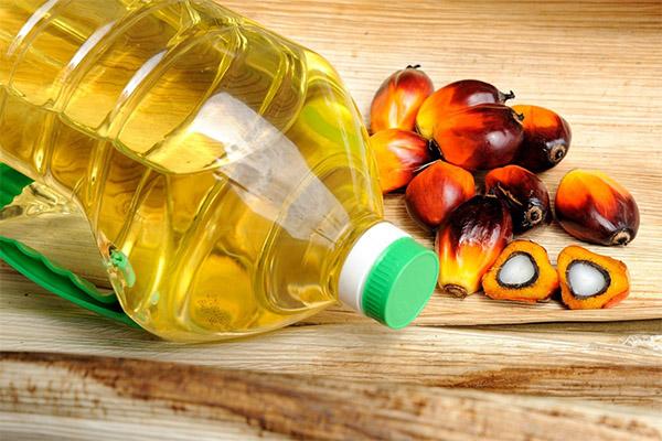 Вред и противопоказания пальмового масла
