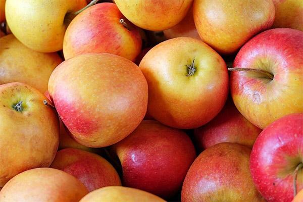 Интересные факты о яблоках