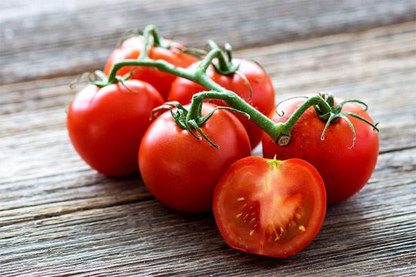 Интересные факты о томатах