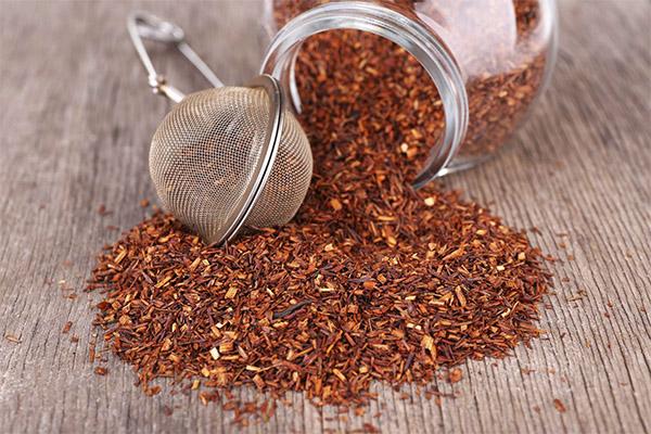 Как выбрать и хранить чай ройбуш