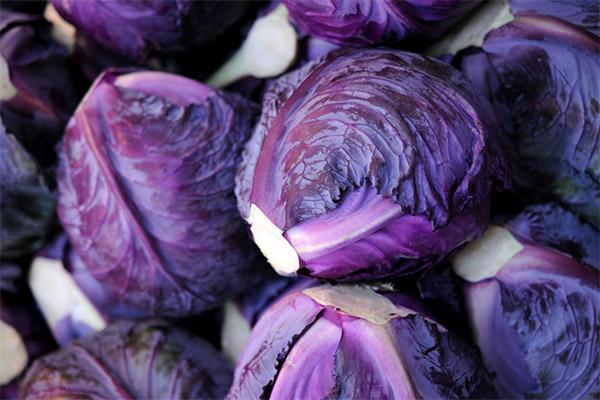 Как выбрать и хранить краснокочанную капусту