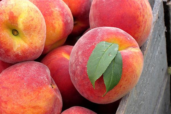 Как выбрать и хранить персики