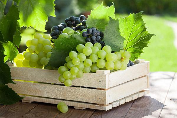 Как выбрать и хранить виноград