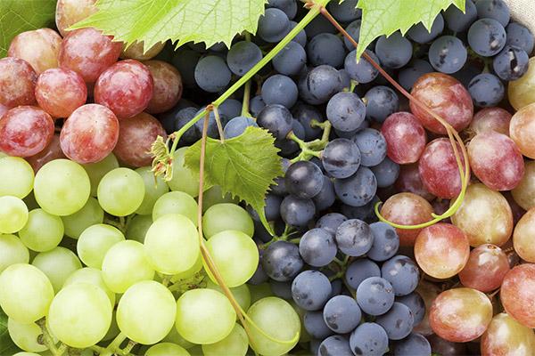 Полезные свойства разных сортов винограда