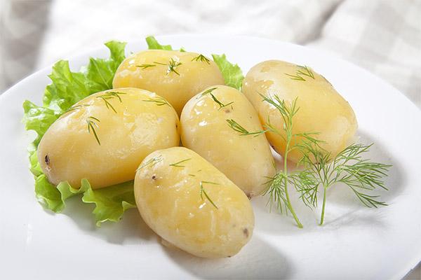 Польза и вред вареной картошки