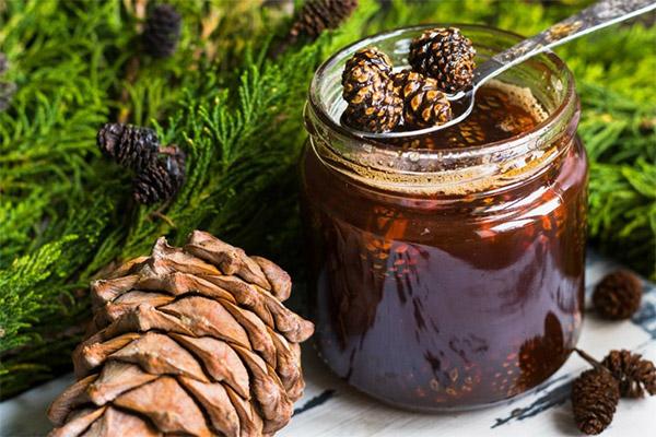 Варенье из сосновых шишек с медом