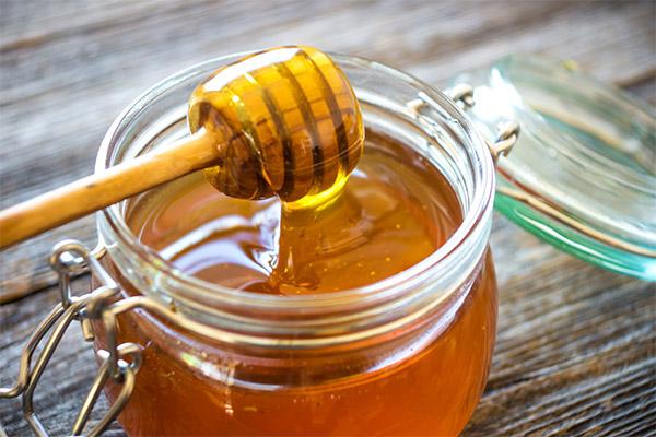 Чем полезен мед из люцерны