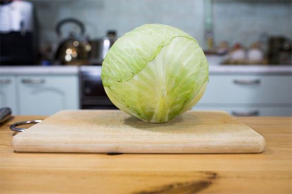 Что можно приготовить из белокочанной капусты