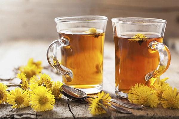 Как пить одуванчиковый чай