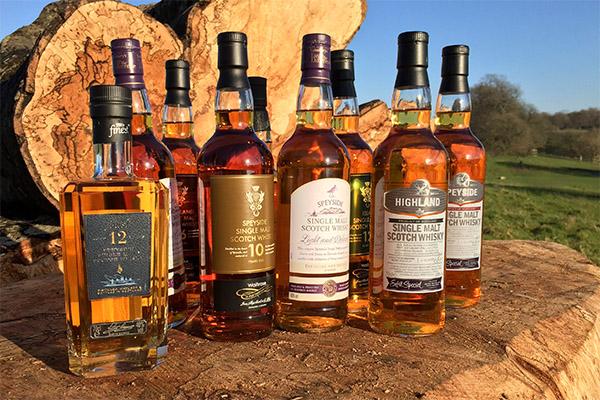 Как пить виски разных видов