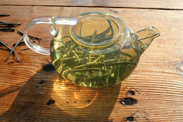 Как правильно заваривать и пить чай кудин